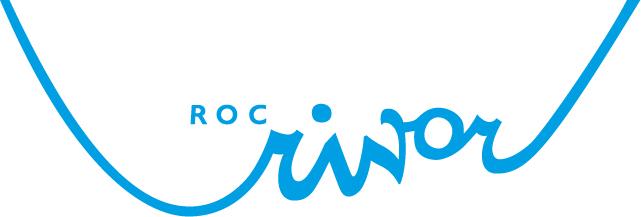 Logo Docent Natuurkunde Vavo