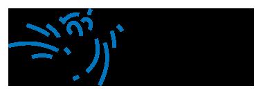 Logo Docent Beeldende Vorming / CKV