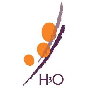 Logo Intern Begeleider (De Sterrekijker)